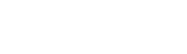 logo_transp_white